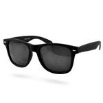 matte-sorte-wayfarer-solbriller-a2f